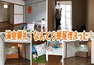 【満室御礼】閑散期に6部屋埋まり、もう来年の繁忙期に向けた戦略を練ってます!!!