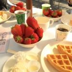 【磐田市1DK3.5万以下】若者が集まる&働く場所を探した先に苺狩り体験!